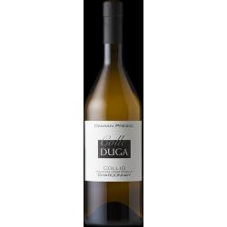Vino Chardonnay Colle Duga